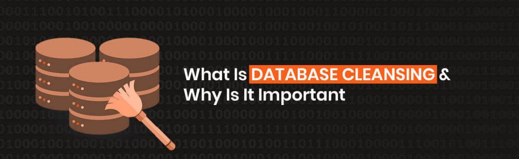 Everything You Need To Know About B2B Data Cleansing | Data Marketers Group