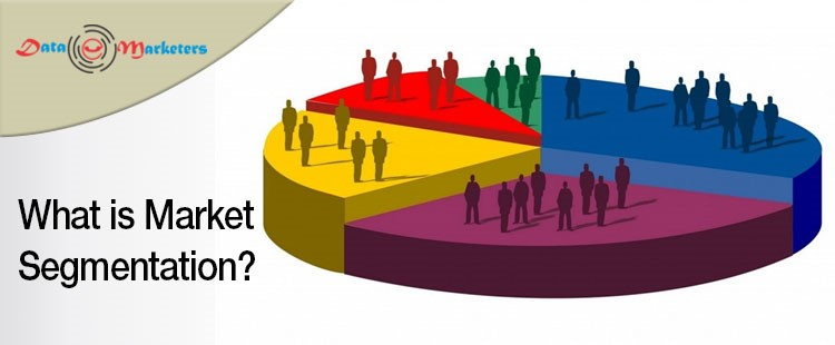 What is Market Segmentation | Data Marketers Group