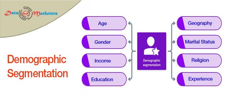 Demographic Segmentation | Data Marketers Group