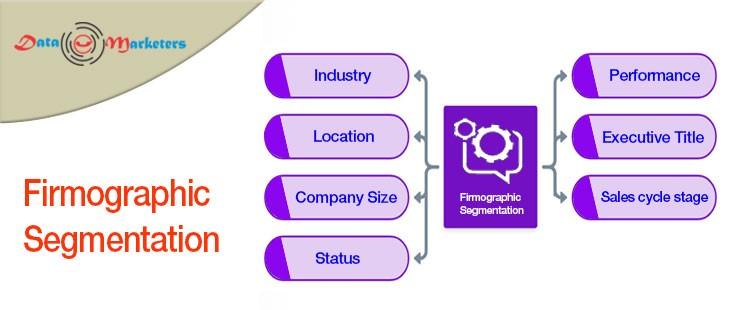 Firmographic Segmentation | Data Marketers Group