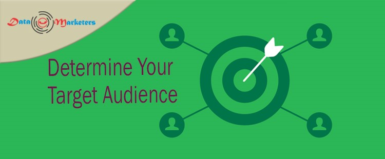 Determine Your Target Audience   Data Marketers Group