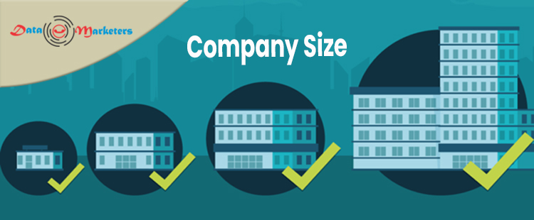 Company Size   Data Marketers Group