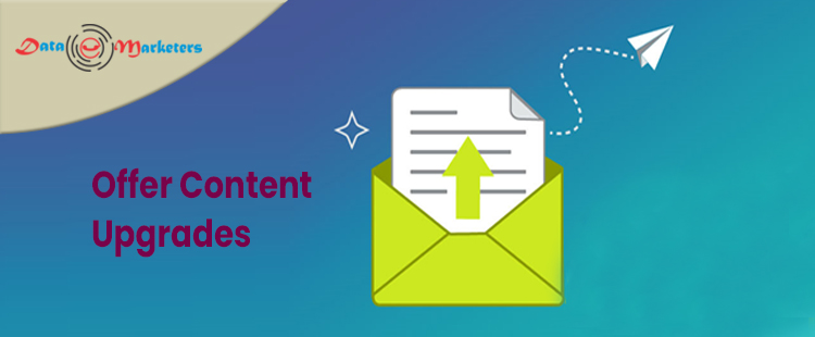 Offer Content Upgrades   Data Marketers Group