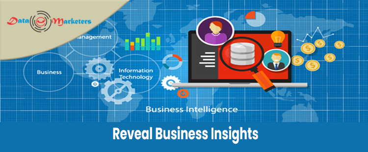 Reveal Business Insights   Data Marketers Group