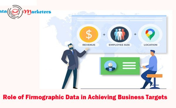 Role Of Firmographic Data In Achieving Business Targets   Data Marketers Group