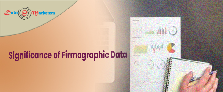 Significance Of Firmographic   Data Marketers Group