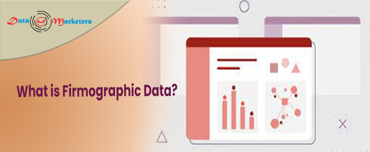 What Is Firmographic Data   Data Marketers Group